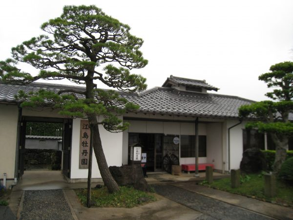 江島牡丹園外観